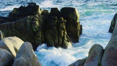 Monterey19_02_500px