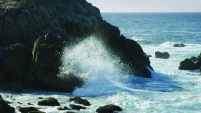 Monterey19_05_500px