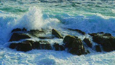 Monterey19_10_500px