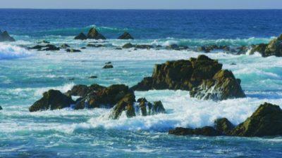 Monterey19_11_500px