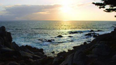 Monterey19_15_500px