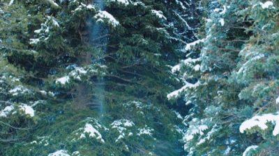 Winter_8K_17_500px
