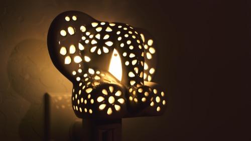 Lilys Lights